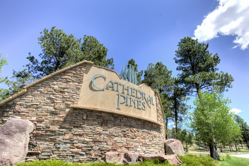 Cathedral-Pines-01